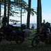 Mopeds natürlich dabei