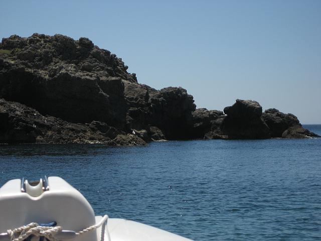 Escola de Mar, sea-life watch