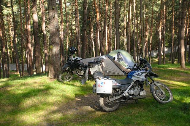 Schon wieder Campen in Polen - auf dem Frischen Haff