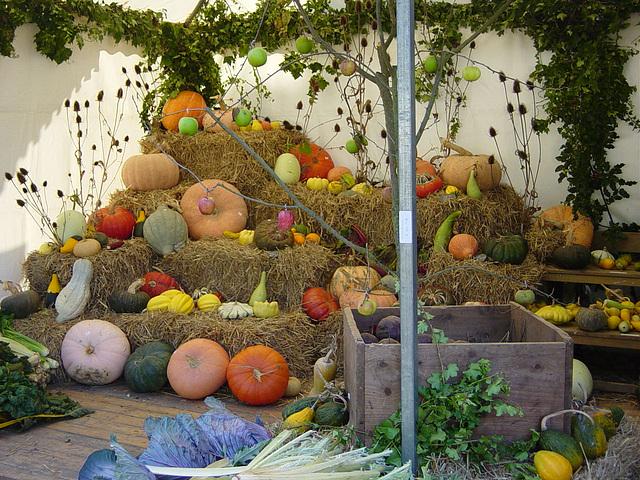 """Sortie FRB jardinage """"Fête des fleurs et des légumes"""""""