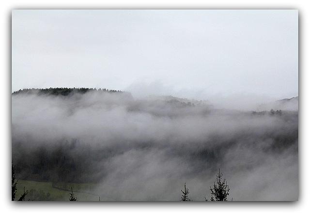Brouillard  (4)