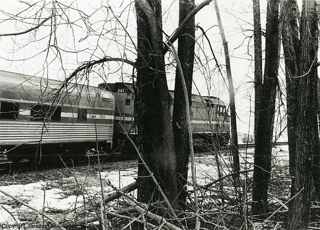 Amtrak #241 In The Trees, Southbound With Train #68, Plattsburgh, NY, USA, 1999