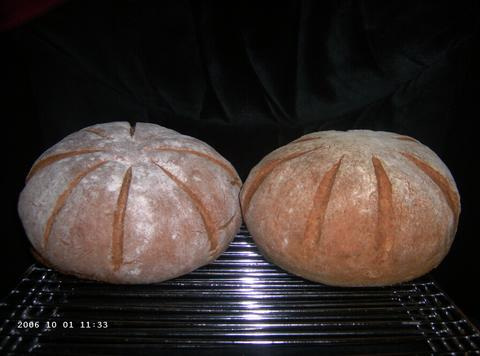 Transitional Hearth Breads 2