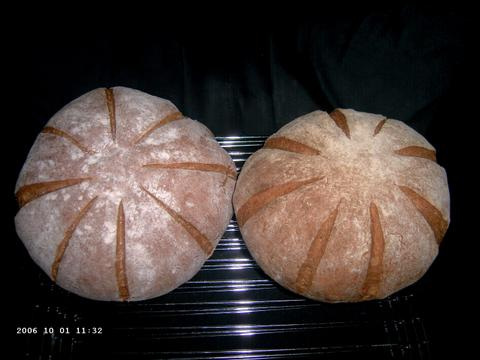 Transitional Hearth Breads 1