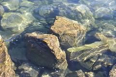 Water in Lake Geneva