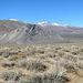 Striped Butte (3258)