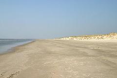 Sandy beach at Skallingen peninsula