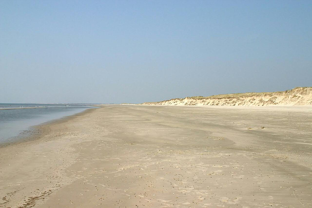 Sandy beach at Skallingen peninsula