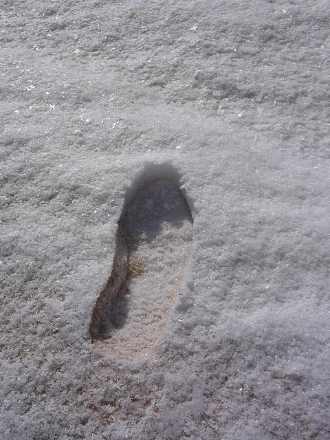 Spur im Salz