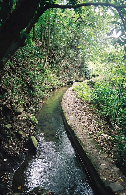 Canal des Esclaves 21