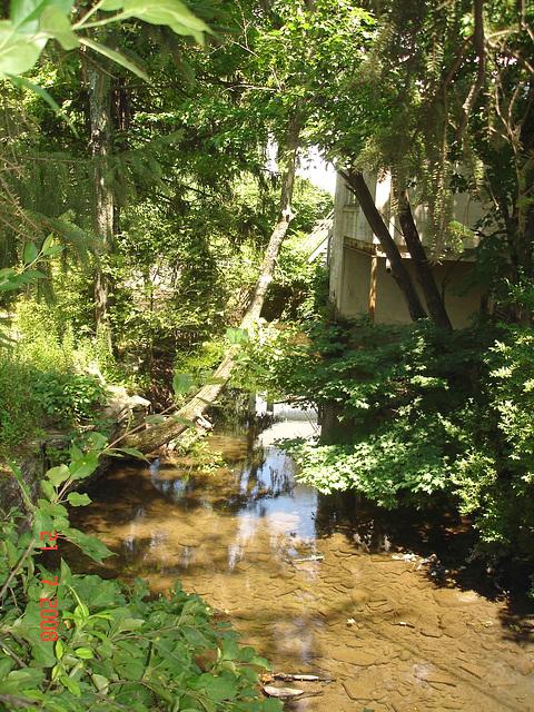 Petit ruisseau  et maison discrète /  Wood stream and hidden house  /   Woodstock, NY  USA.