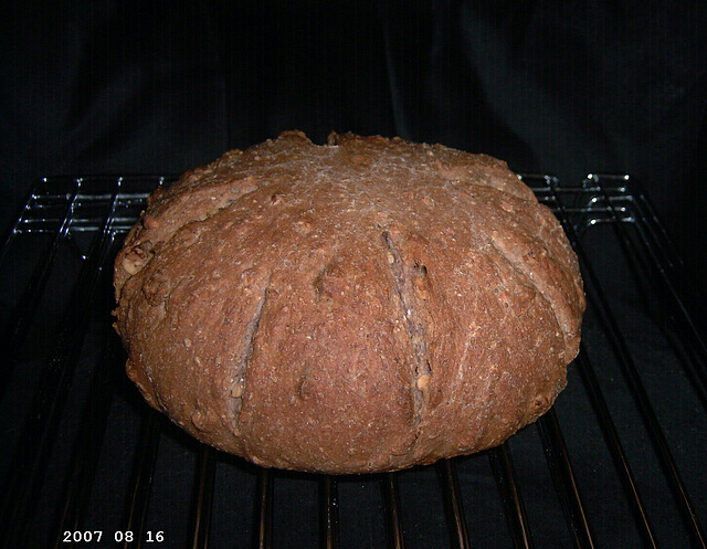 Wheat Walnut Loaf 1