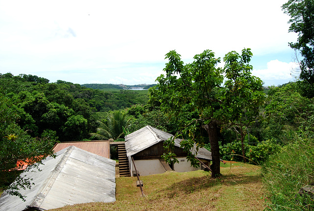 Le cacao est mis à sècher sur la partie plate du toit