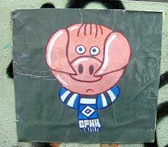 Chosen Few HSV - Ultraschweinchen