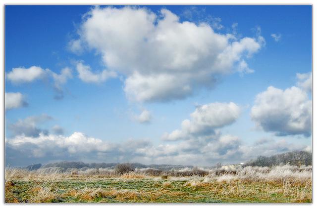 Eiszeit or *Winterwonderland*