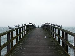 Zugeschissene Seebrücke
