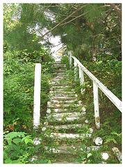 Solitude Ste-Françoise / 19 août 2006 - Vers le parc musical Ginette Reno.