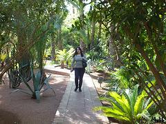 Jardin Majorelle..!