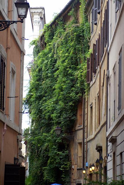 2007 11 - Rome - 0007