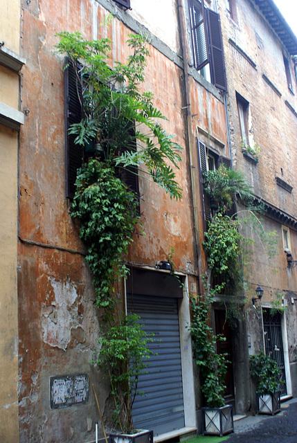 2007 11 - Rome - 0014