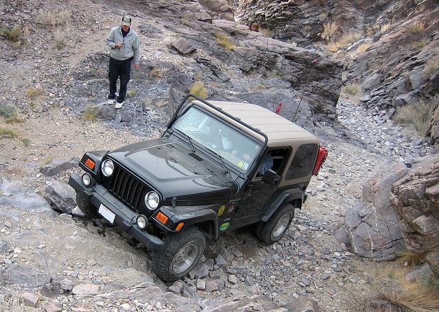 Pat's Jeep (8539)