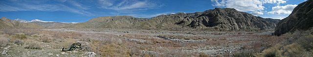 Whitewater Preserve (4)