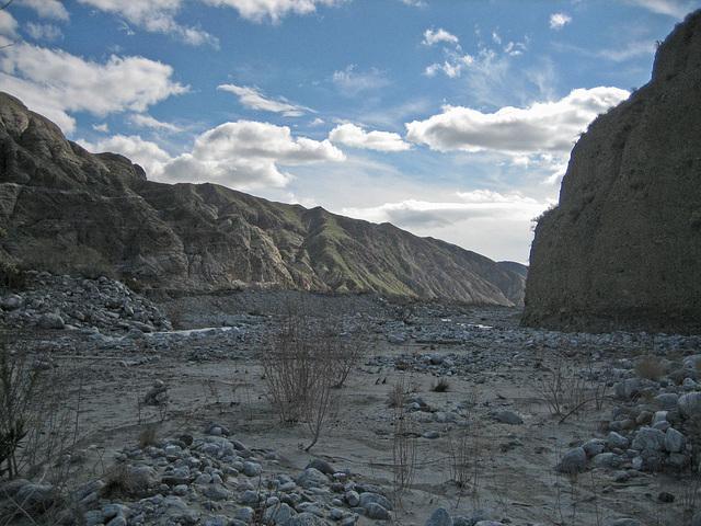Whitewater Preserve (8931)