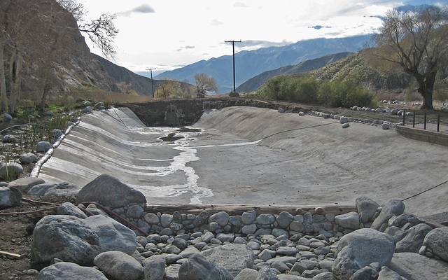 Whitewater Preserve Trout Pool (8909)