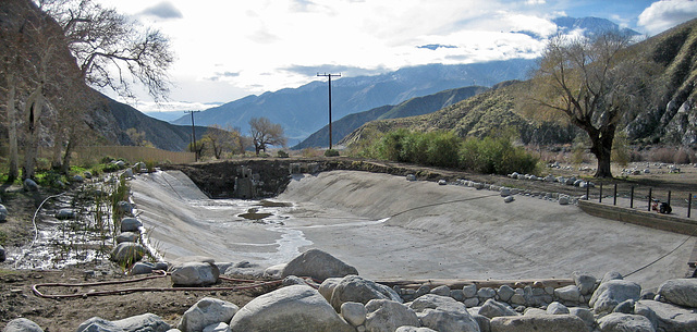 Whitewater Preserve Trout Pool (8910)