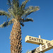 Dantes and Furnace Creek (8551)