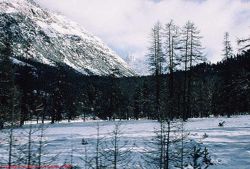 Swiss Landscape, near Pontresina, Switzerland, 1998