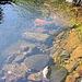 Stone, water, rust ...