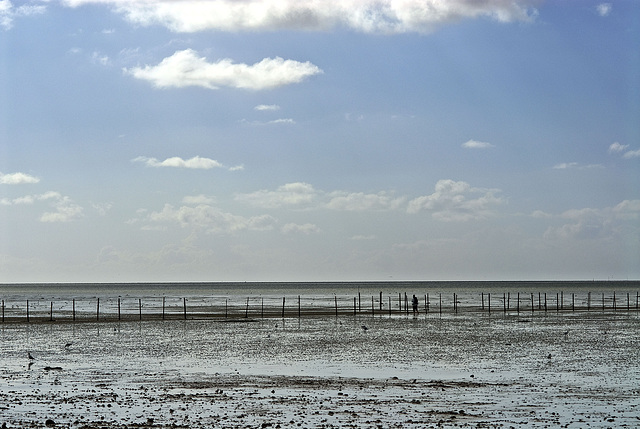 Wadden sea and sky