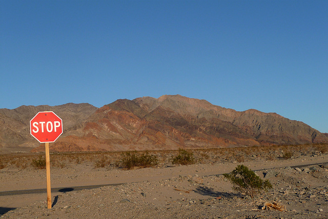Along Badwater Road (3374)