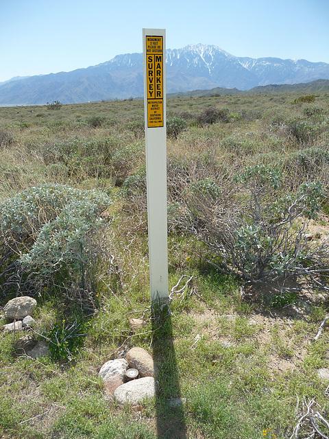 MWD Survey Marker (3593)