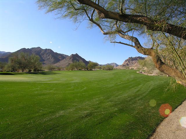 La Quinta golf course (6806)