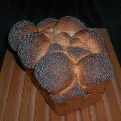 Whole-Wheat Sandwich Bread 1