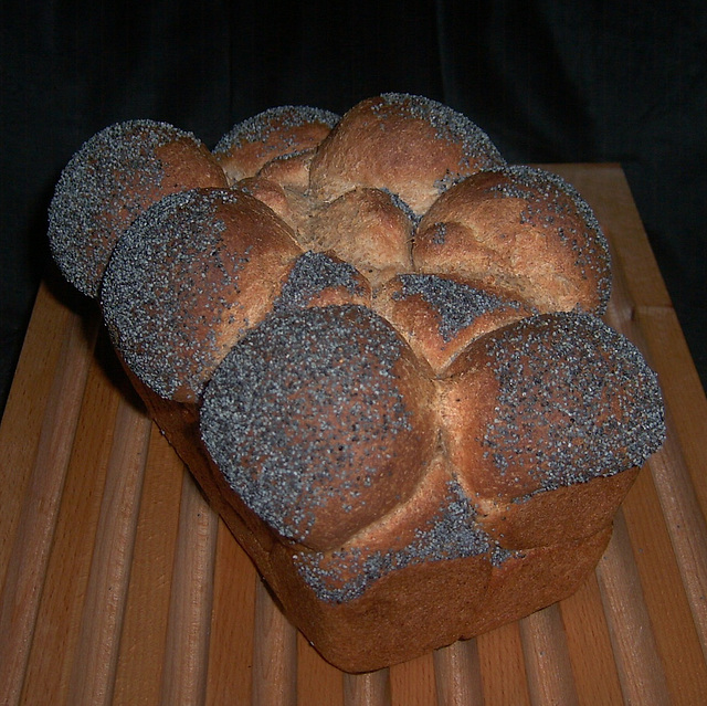 Whole-Wheat Sandwich Bread 1