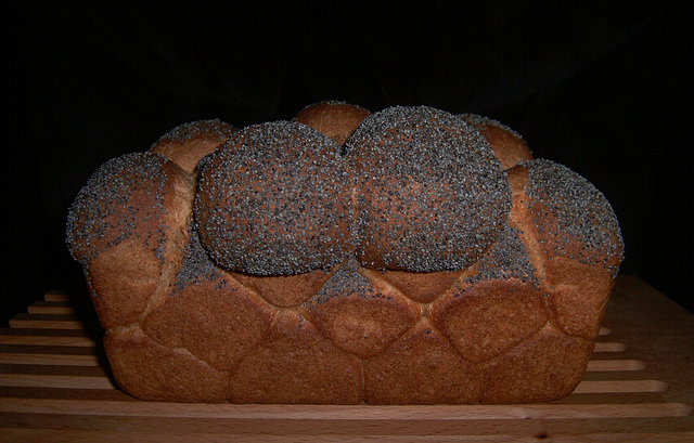 Whole-Wheat Sandwich Bread 2