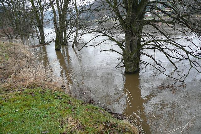 Frühjahrshochwasser März 2009