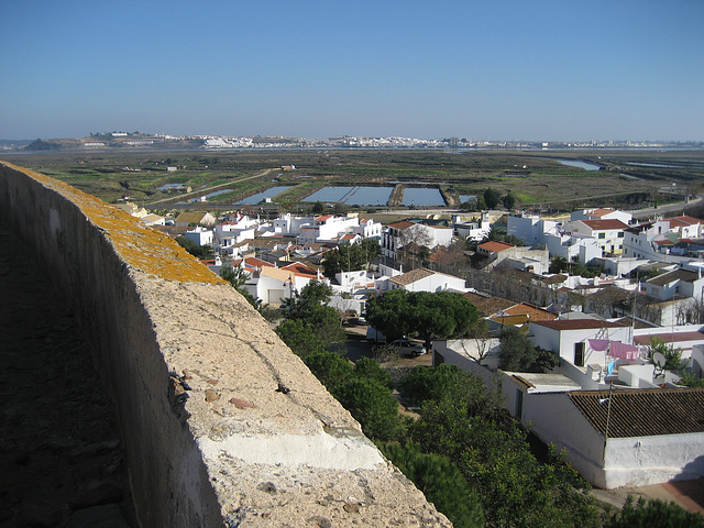 Algarve, Natural Reserve of Castro Marim, mouth of river Guadiana (1)