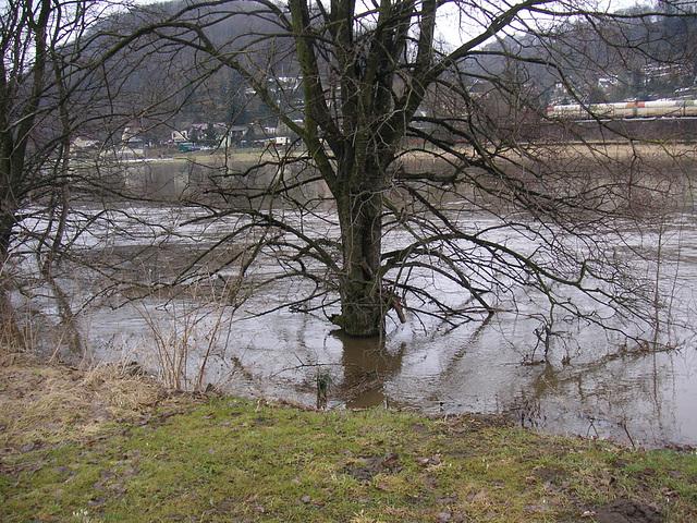 Hochwasser März - April 2006