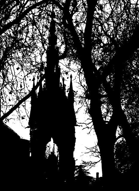 Albert in silhouette