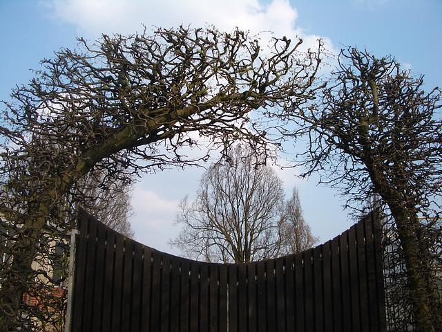 Tor zur Gärtnerei im Berggarten