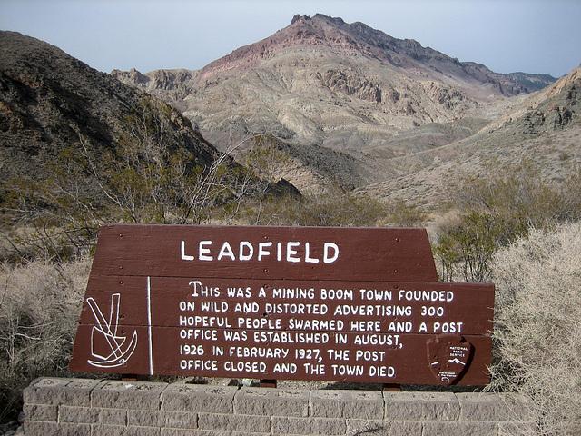 Leadfield (8687)