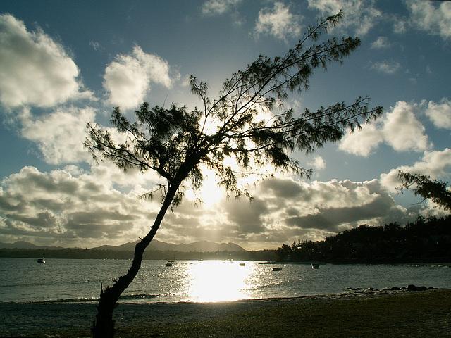 Mauritius088