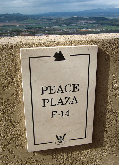 F-14 on Peace Plaza (8894)