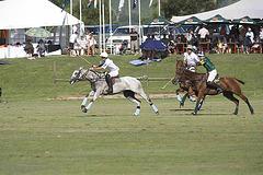 kurland polo 2007  (17)