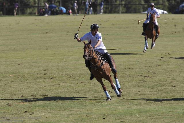 kurland polo 2007  (21)