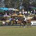kurland polo 2007  (23)